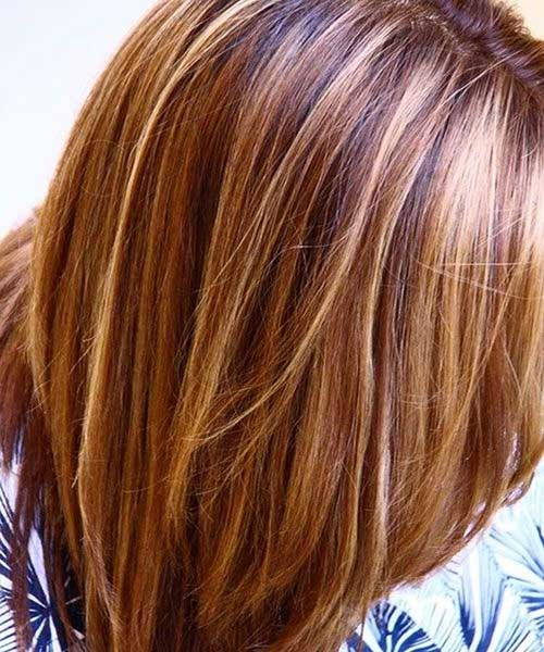 Light Brown Hair Color with Highlights Ideas