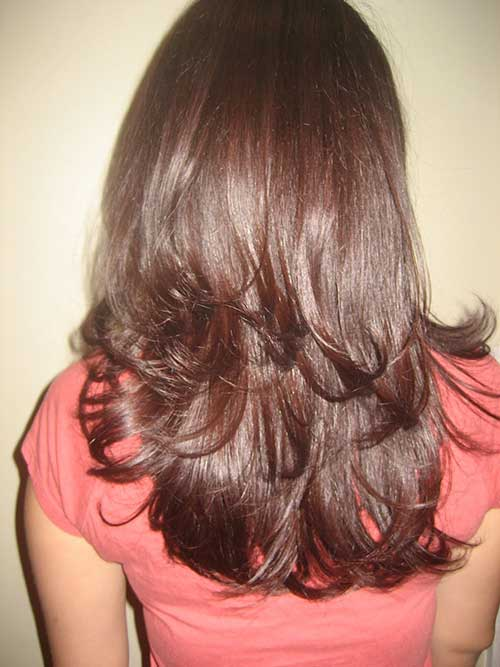 Dark Brown Long Layered Hair Back View Look