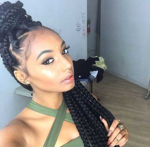 Afro Hairstyles with Braids-13