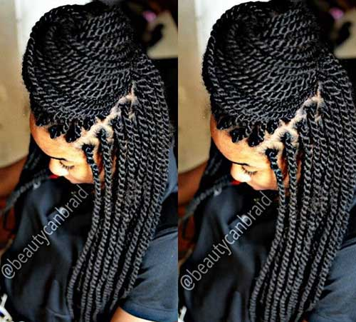 Afro Hairstyles with Braids-17