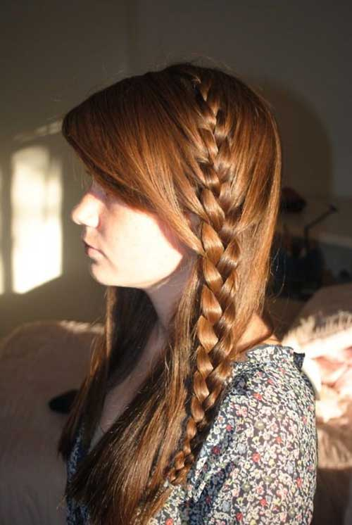 Long Beautiful Hair with Braids