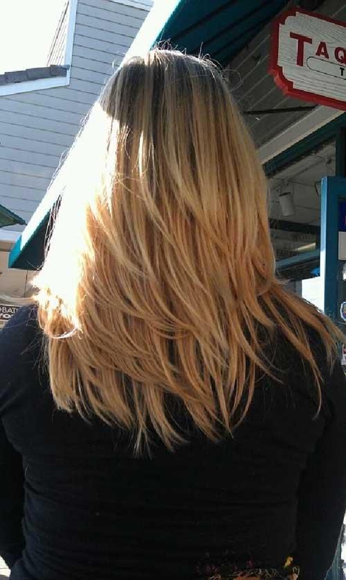 Layered Haircuts Back View-20