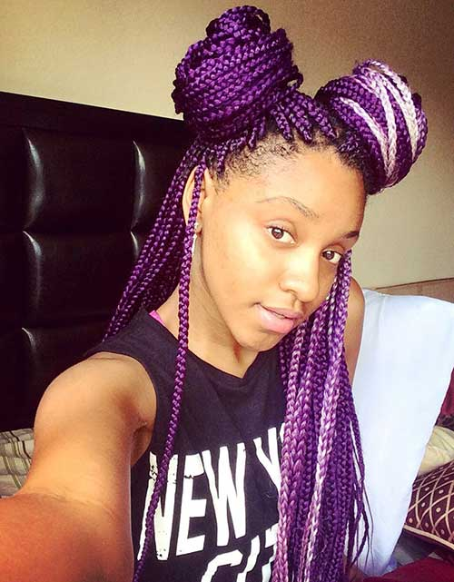 25 Afro Hairstyles With Braids Hairstyles And Haircuts