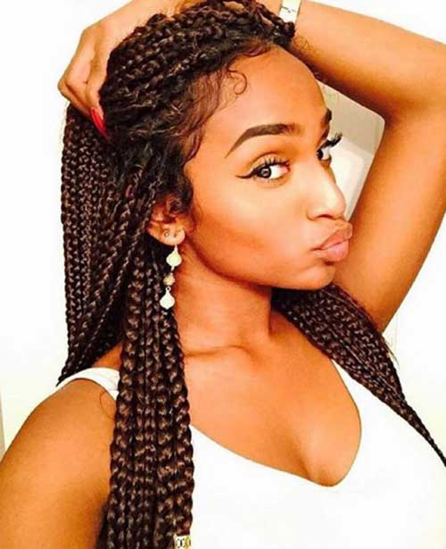 Afro Hairstyles with Braids-24