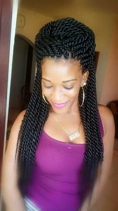 Afro Hairstyles with Braids-8