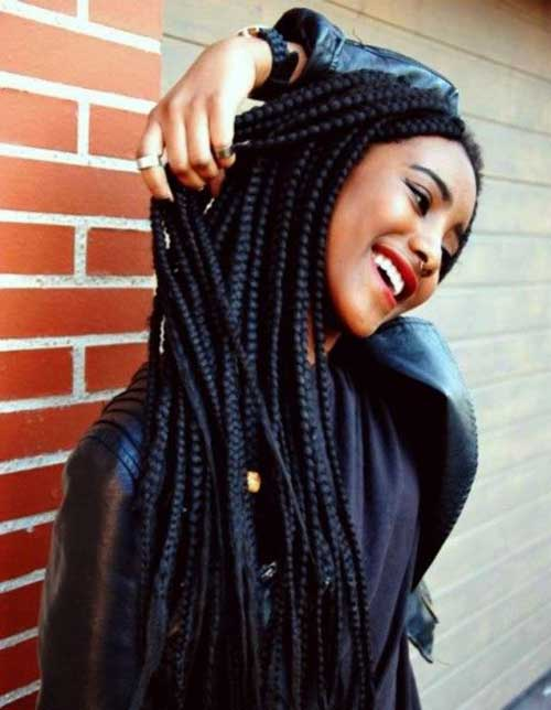 Afro Hairstyles with Braids