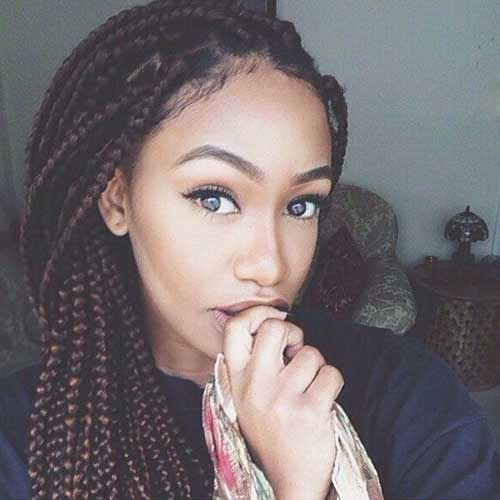 Hairstyles Braids for African Hair