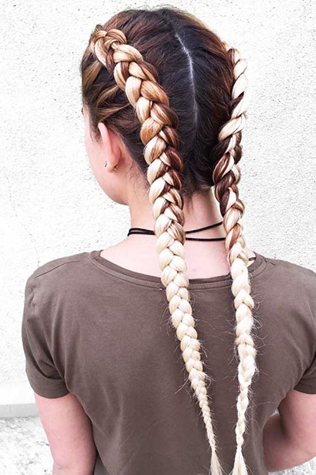 Hair Braid Braids Braided