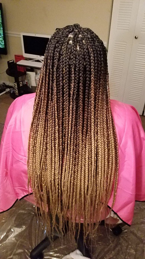 Individual Braid Styles Pictures